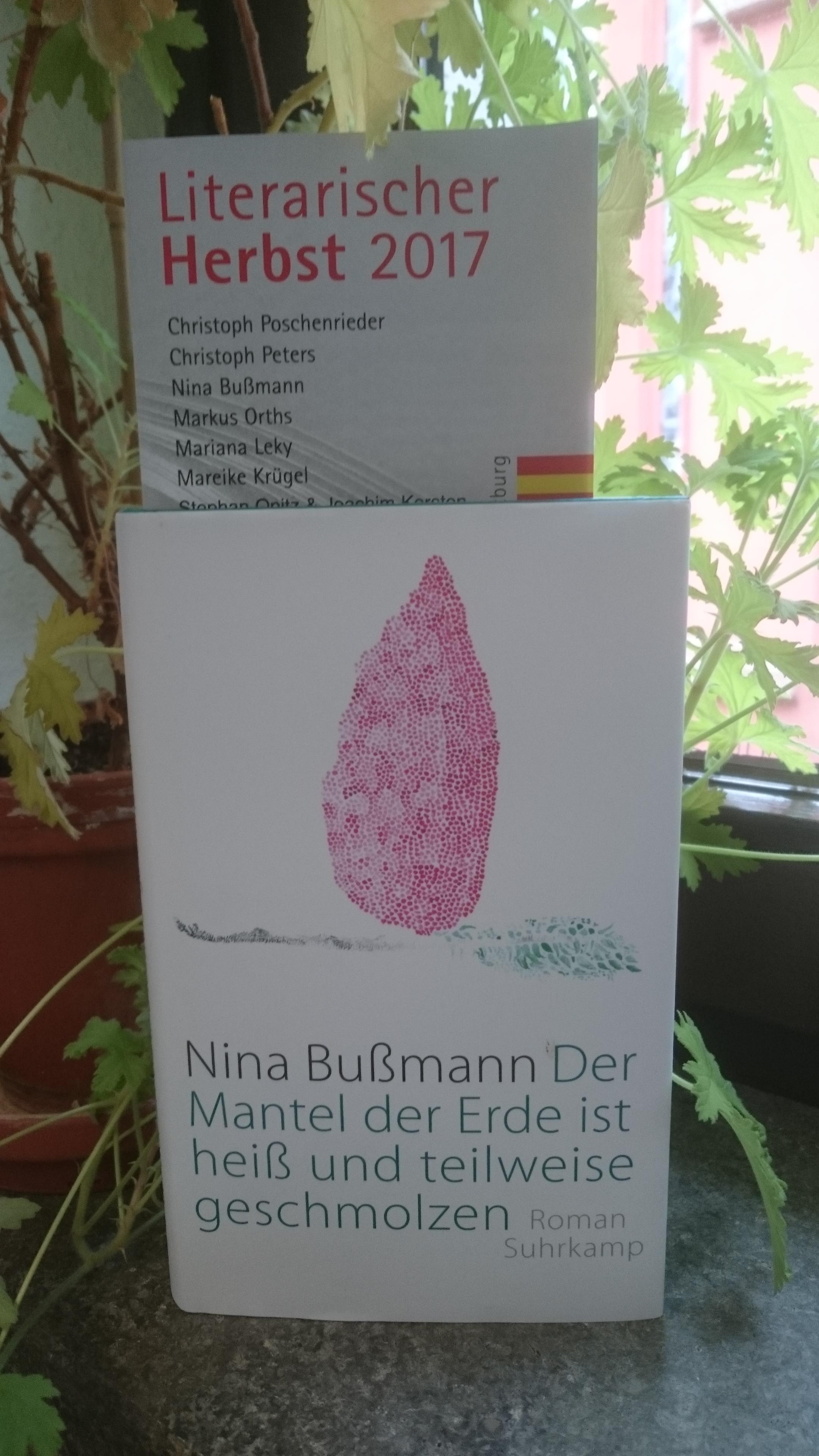 Nina Bußmann: Der Mantel der Erde ist heiß und teilweise geschmolzen