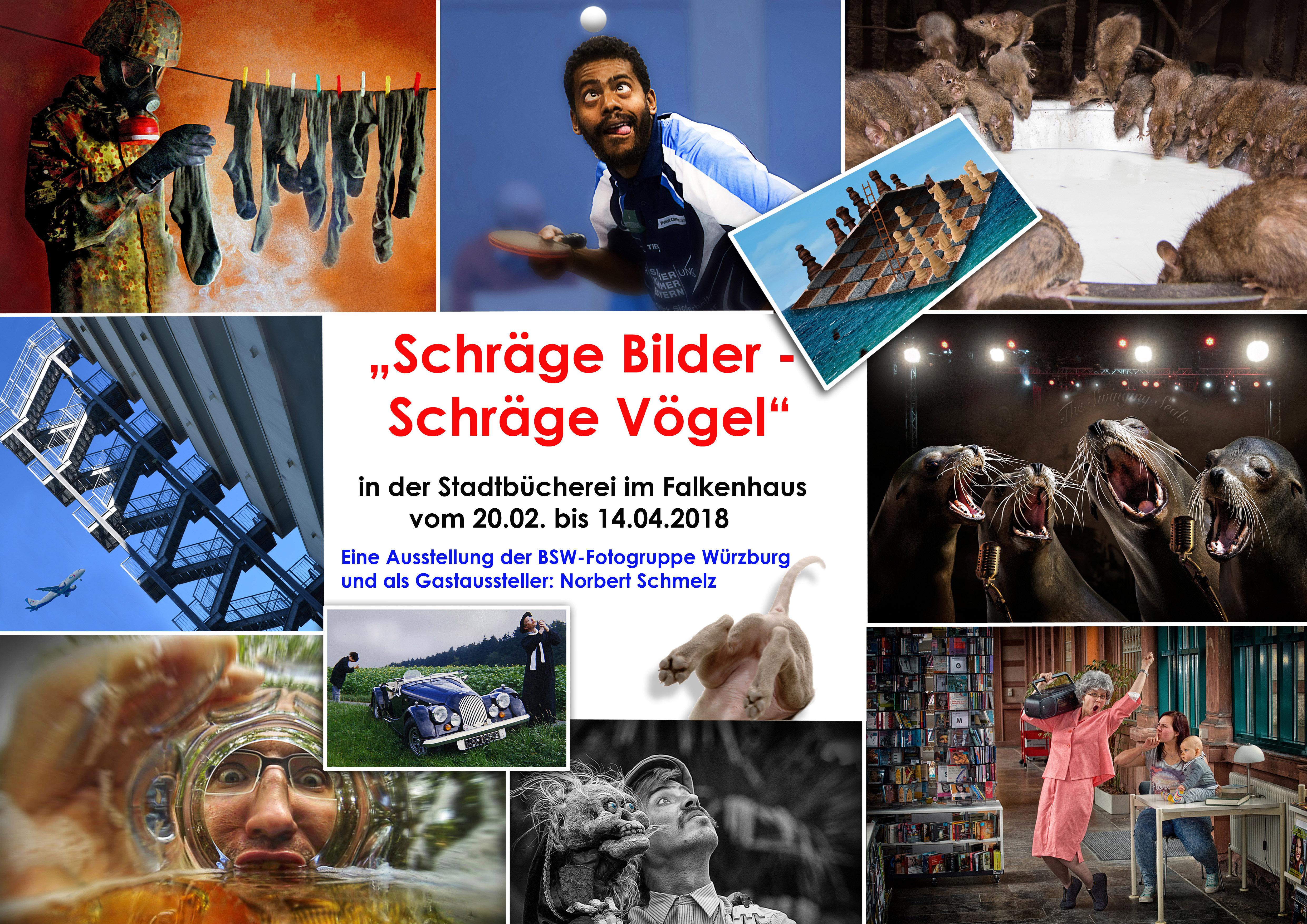 """Fotoausstellung """"Schräge Bilder –Schräge Vögel"""""""