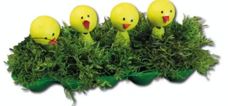 Osternest-Eierschachtel – Basteln mit Kindern
