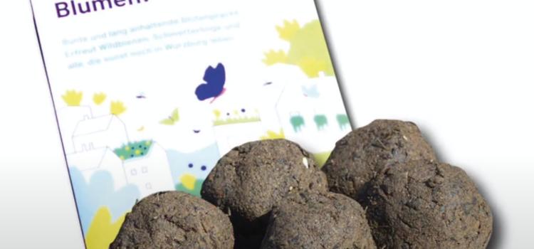 Samenbomben – Basteln mit Kindern