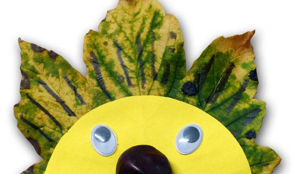 Igel aus Blättern mit Gesicht.